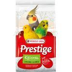 Prestige Shell Sand KRISTAL