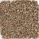 Deli Nature Konopné semeno 1kg