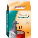 Colombine Seaweed Grit Versele Laga 20kg