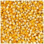 Kukurica Deli Nature 20kg