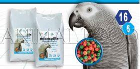 Micropills Adult Grey Parrots