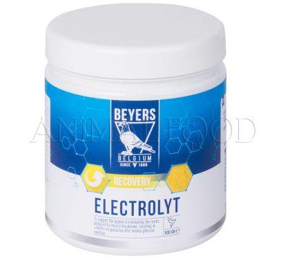ELEKTROLYT 500g